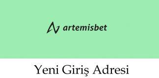 295Artemisbet Giriş Adresi – 295 Artemisbet Sorunsuz Giriş